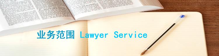 法律服务领域